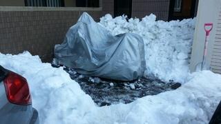 先日の大雪で埋もれてしまった愛車の救出作業。まだ外に出せるルートが作れないけど、とりあえずここまで。。。